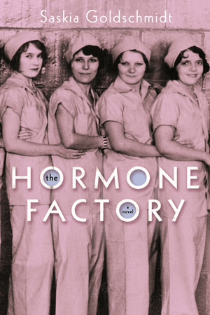 The Hormone Factory by Saskia Goldschmidt