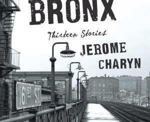 Bitter Bronx: Thirteen Stories by Jerome Charyn