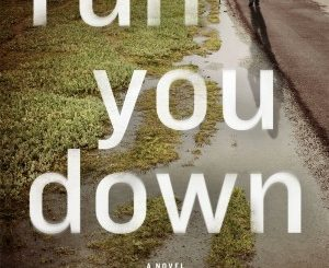 Run You Down by Julia Dahl