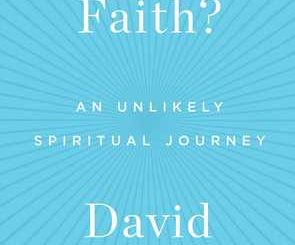 How's Your Faith? An Unlikely Spiritual Journey by David Gregory
