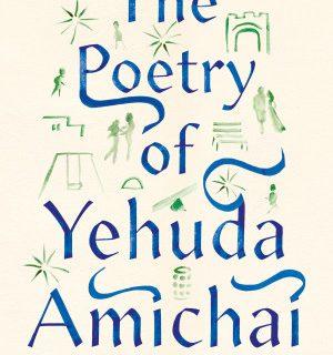 The Poetry of Yehuda Amichai, edited by Robert Alter