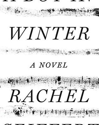 A Boy in Winter by Rachel Seiffert