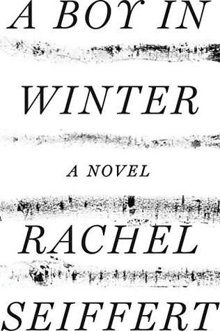Cover for A Boy in Winter by Rachel Seiffert
