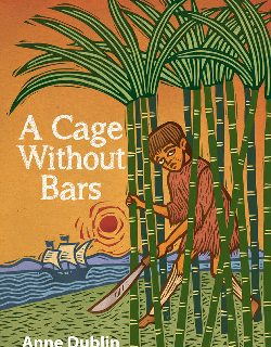 A Cage Without Bars by Anne Dublin