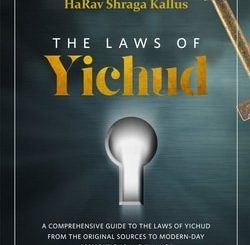 The Laws of Yichud: A Comprehensive Guide to The Laws of Yichud From the Original Sources to Modern-Day Applications and Rulings by HaRav Shraga Kallus