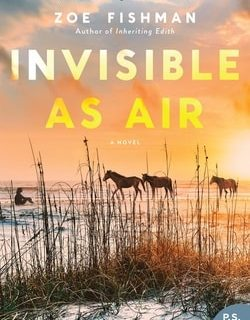 Invis­i­ble As Air by Zoe Fish­man
