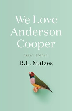 We Love Anderson Cooper: Short Stories by R.L. Maizes