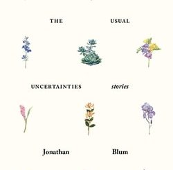 The Usual Uncertainties: Stories by Jonathan Blum