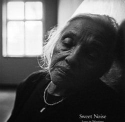 Sweet Noise: Love in Wartime by Max Hirshfeld